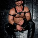 Marco, 34 years old, Eagle, USA